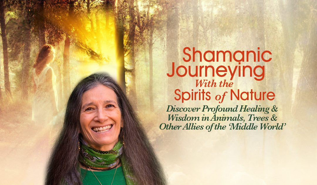 Re-establish the healing relationships shamans had with our natural allies