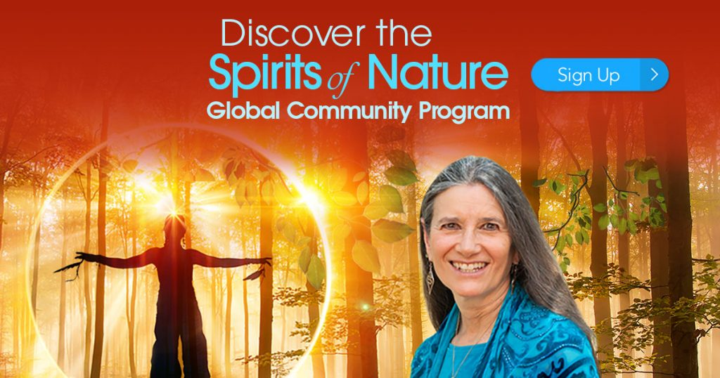 Join Sandra in a supportive and loving virtual community forming with renowned shamanism teacher Sandra Ingerman  that can help you develop deep relationships with nature allies such as  animals and trees, do personal healing work, and participate in  ceremonies for nature beings in need.